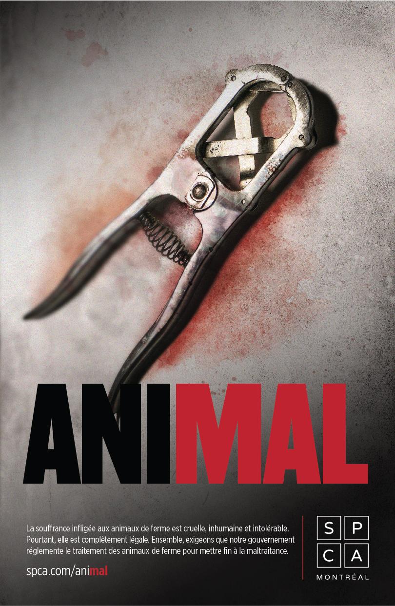 affiche_animal_v3